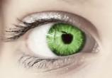 『The apple of my eye.』目の中にリンゴは入ってません。