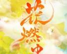 『花燃ゆ』大河ドラマって英語で何て言います?
